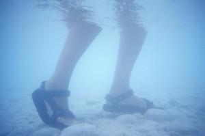 Dykkerrejse med BEring